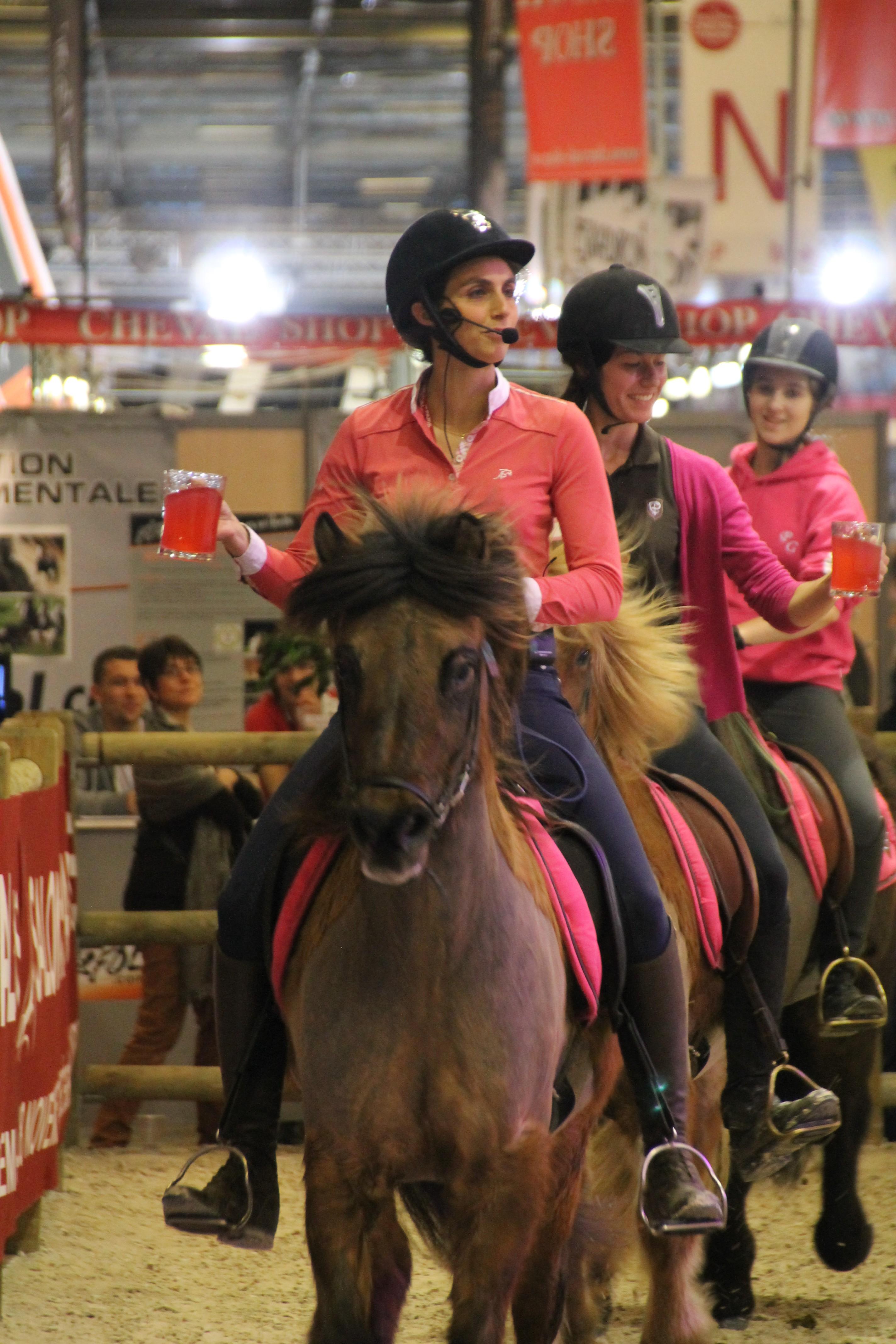 Le salon du cheval de paris en pleine f te les ecuries d - Salon du cheval tarif ...