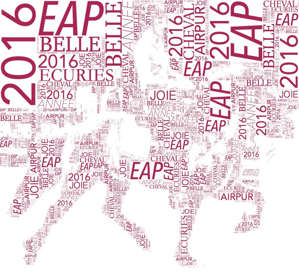 VOEUX EAP 2016