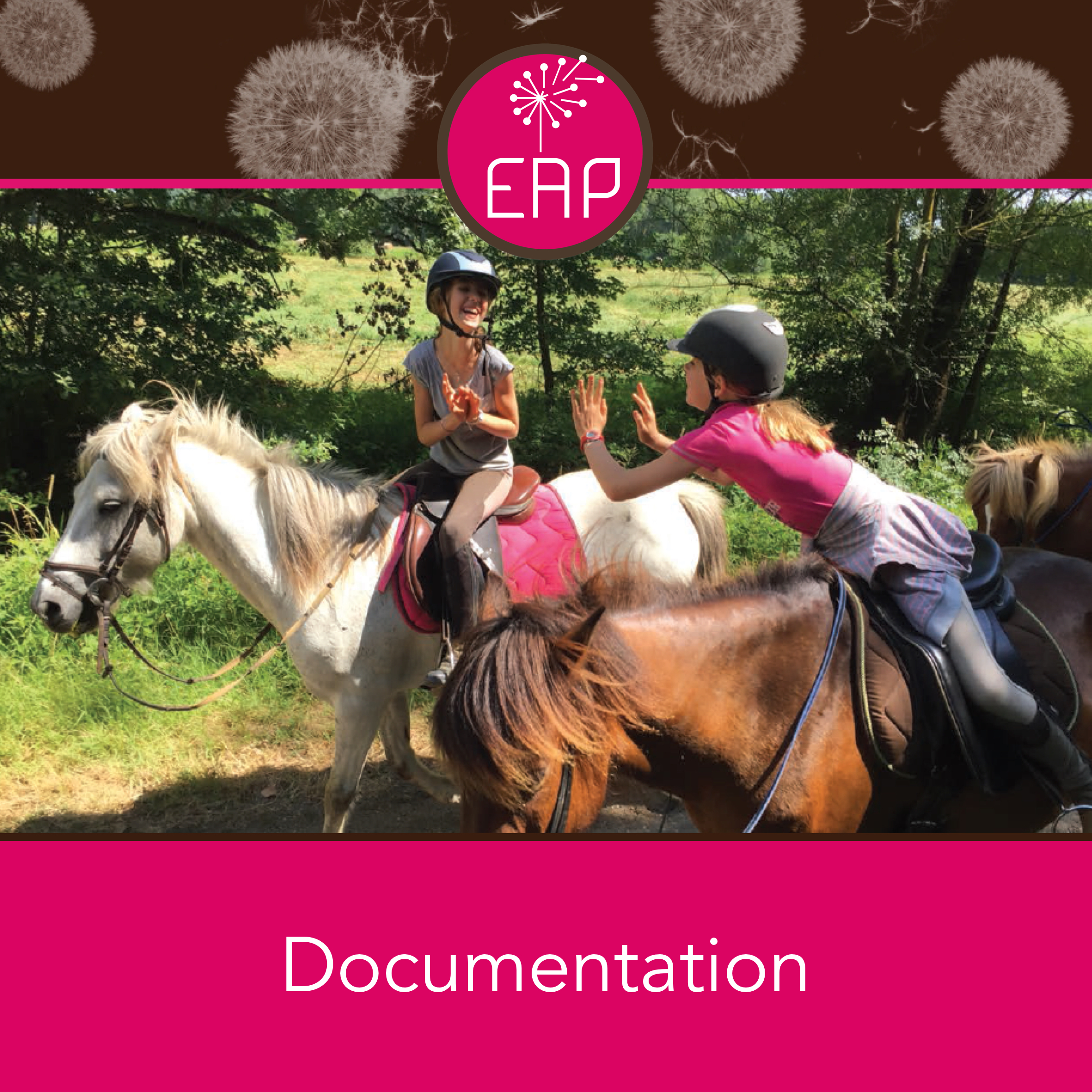 documentation-eap