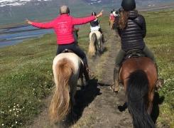Bonheur d'Islande