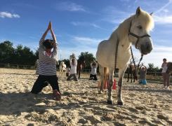 Séance Cheval & Yoga