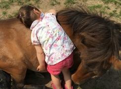 A quand remonte le câlin de votre poney préféré?