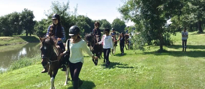 Randonnée à cheval, bords de Sarthe