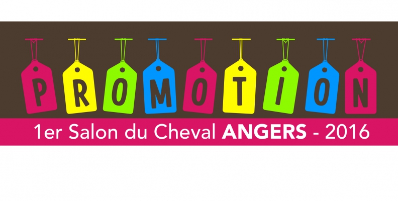 Promo salon cheval angers les ecuries d 39 air pur eap for Home salon angers